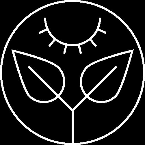 Eye---Grow2